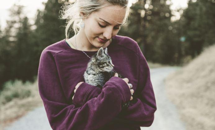 assicurazione gatto costo